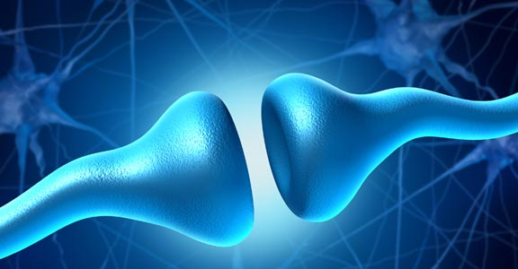 RECONNECTING YOUR NEURAL PATHWAYS <br>TO RESTORE BALANCE